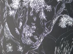 Oak Tree (6) 005
