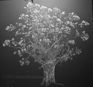 Oak Tree (6)