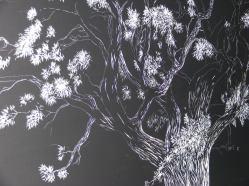 Oak Tree (6) 008