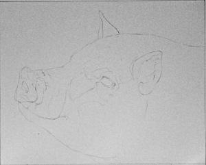 Piggy WIP 001
