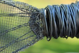 Fish Sculpture 050