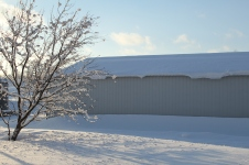 February 20th Snowstorm 009