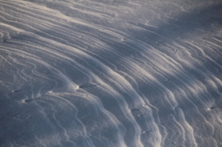 February 20th Snowstorm 033 - Copy