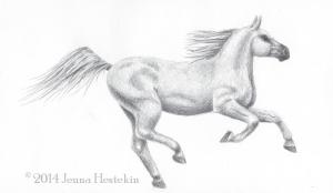 Horse SketchCR