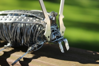 Sculptures, Bug and Elephant 003 - Copy