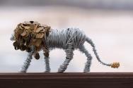 Lion Sold